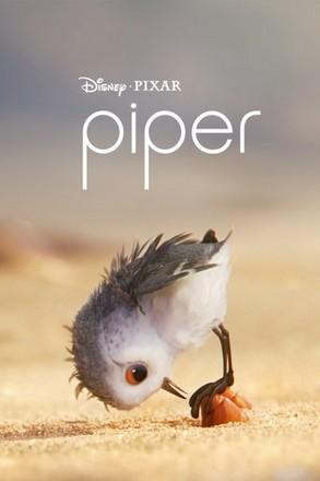 ดูหนัง Piper แอนิเมชั่นสั้น ฉายปะหน้า Finding Dory ดูหนังออนไลน์ฟรี ดูหนังฟรี ดูหนังใหม่ชนโรง หนังใหม่ล่าสุด หนังแอคชั่น หนังผจญภัย หนังแอนนิเมชั่น หนัง HD ได้ที่ movie24x.com