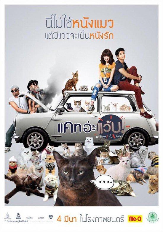 ดูหนัง Cat a Wabb แคท อะแว้บ แบบว่ารักอ่ะ ดูหนังออนไลน์ฟรี ดูหนังฟรี ดูหนังใหม่ชนโรง หนังใหม่ล่าสุด หนังแอคชั่น หนังผจญภัย หนังแอนนิเมชั่น หนัง HD ได้ที่ movie24x.com