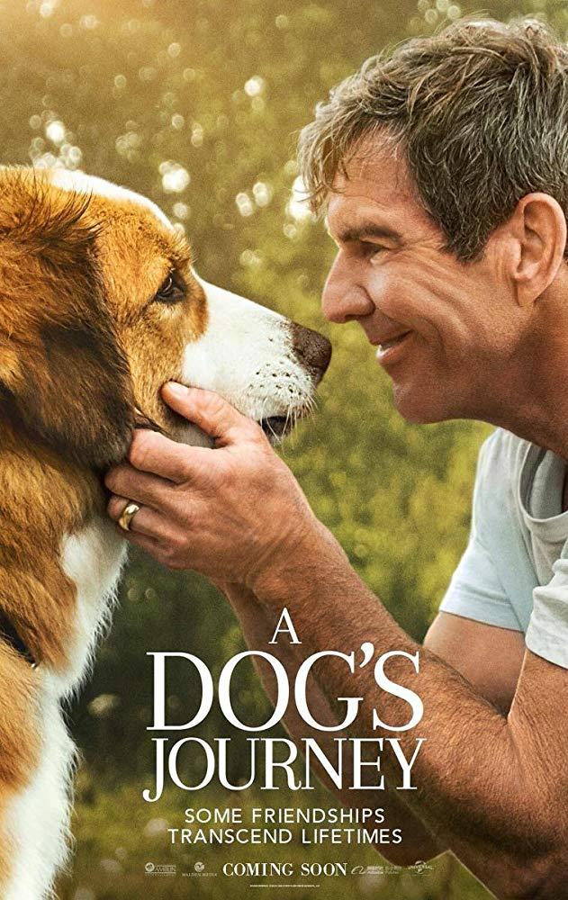 ดูหนัง A Dog's Journey (2019) หมา เป้าหมาย และเด็กชายของผม ดูหนังออนไลน์ฟรี ดูหนังฟรี ดูหนังใหม่ชนโรง หนังใหม่ล่าสุด หนังแอคชั่น หนังผจญภัย หนังแอนนิเมชั่น หนัง HD ได้ที่ movie24x.com
