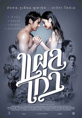 ดูหนัง แผลเก่า (2014) Plae kao ดูหนังออนไลน์ฟรี ดูหนังฟรี HD ชัด ดูหนังใหม่ชนโรง หนังใหม่ล่าสุด เต็มเรื่อง มาสเตอร์ พากย์ไทย ซาวด์แทร็ก ซับไทย หนังซูม หนังแอคชั่น หนังผจญภัย หนังแอนนิเมชั่น หนัง HD ได้ที่ movie24x.com