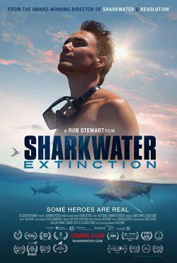 ดูหนัง Sharkwater Extinction (2018) การสูญพันธุ์ของปลาฉลาม ดูหนังออนไลน์ฟรี ดูหนังฟรี HD ชัด ดูหนังใหม่ชนโรง หนังใหม่ล่าสุด เต็มเรื่อง มาสเตอร์ พากย์ไทย ซาวด์แทร็ก ซับไทย หนังซูม หนังแอคชั่น หนังผจญภัย หนังแอนนิเมชั่น หนัง HD ได้ที่ movie24x.com