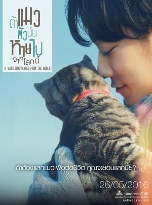 ดูหนัง If cat Disappear From The World (2016) ถ้าแมวตัวนั้นหายไปจากโลกนี้ ดูหนังออนไลน์ฟรี ดูหนังฟรี HD ชัด ดูหนังใหม่ชนโรง หนังใหม่ล่าสุด เต็มเรื่อง มาสเตอร์ พากย์ไทย ซาวด์แทร็ก ซับไทย หนังซูม หนังแอคชั่น หนังผจญภัย หนังแอนนิเมชั่น หนัง HD ได้ที่ movie24x.com