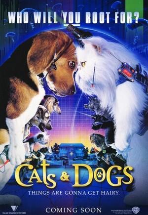 ดูหนัง Cats & Dogs 1 (2001) สงครามพยัคฆ์ร้ายขนปุย ภาค 1 ดูหนังออนไลน์ฟรี ดูหนังฟรี ดูหนังใหม่ชนโรง หนังใหม่ล่าสุด หนังแอคชั่น หนังผจญภัย หนังแอนนิเมชั่น หนัง HD ได้ที่ movie24x.com