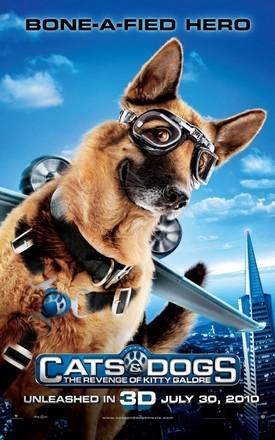 ดูหนัง Cats & Dogs: The Revenge of Kitty Galore (2010) สงครามพยัคฆ์ร้ายขนปุย ภาค 2 ดูหนังออนไลน์ฟรี ดูหนังฟรี ดูหนังใหม่ชนโรง หนังใหม่ล่าสุด หนังแอคชั่น หนังผจญภัย หนังแอนนิเมชั่น หนัง HD ได้ที่ movie24x.com