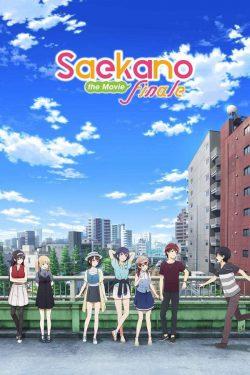 ดูหนัง Saenai Heroine no Sodatekata Fine (2019) วิธีปั้นสาวบ้านให้มาเป็นนางเอกของผม ดูหนังออนไลน์ฟรี ดูหนังฟรี ดูหนังใหม่ชนโรง หนังใหม่ล่าสุด หนังแอคชั่น หนังผจญภัย หนังแอนนิเมชั่น หนัง HD ได้ที่ movie24x.com