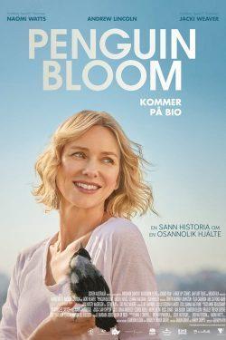 ดูหนัง Penguin Bloom (2021) เพนกวิน บลูม ดูหนังออนไลน์ฟรี ดูหนังฟรี HD ชัด ดูหนังใหม่ชนโรง หนังใหม่ล่าสุด เต็มเรื่อง มาสเตอร์ พากย์ไทย ซาวด์แทร็ก ซับไทย หนังซูม หนังแอคชั่น หนังผจญภัย หนังแอนนิเมชั่น หนัง HD ได้ที่ movie24x.com