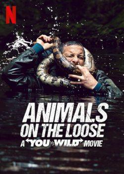 ดูหนัง Animals on the Loose: A You vs. Wild Movie (2021) ผจญภัยสุดขั้วกับแบร์ กริลส์ เดอะ มูฟวี่ ดูหนังออนไลน์ฟรี ดูหนังฟรี HD ชัด ดูหนังใหม่ชนโรง หนังใหม่ล่าสุด เต็มเรื่อง มาสเตอร์ พากย์ไทย ซาวด์แทร็ก ซับไทย หนังซูม หนังแอคชั่น หนังผจญภัย หนังแอนนิเมชั่น หนัง HD ได้ที่ movie24x.com
