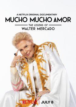 ดูหนัง Mucho Mucho Amor: The Legend of Walter Mercado (2020) วอลเตอร์ เมอร์คาโด: สารแห่งรักและความหวัง ดูหนังออนไลน์ฟรี ดูหนังฟรี HD ชัด ดูหนังใหม่ชนโรง หนังใหม่ล่าสุด เต็มเรื่อง มาสเตอร์ พากย์ไทย ซาวด์แทร็ก ซับไทย หนังซูม หนังแอคชั่น หนังผจญภัย หนังแอนนิเมชั่น หนัง HD ได้ที่ movie24x.com