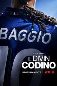 ดูหนัง Baggio-The-Divine-Ponytail ดูหนังออนไลน์ฟรี ดูหนังฟรี HD ชัด ดูหนังใหม่ชนโรง หนังใหม่ล่าสุด เต็มเรื่อง มาสเตอร์ พากย์ไทย ซาวด์แทร็ก ซับไทย หนังซูม หนังแอคชั่น หนังผจญภัย หนังแอนนิเมชั่น หนัง HD ได้ที่ movie24x.com
