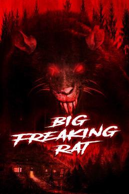 ดูหนัง Big Freaking Rat (2020) ดูหนังออนไลน์ฟรี ดูหนังฟรี HD ชัด ดูหนังใหม่ชนโรง หนังใหม่ล่าสุด เต็มเรื่อง มาสเตอร์ พากย์ไทย ซาวด์แทร็ก ซับไทย หนังซูม หนังแอคชั่น หนังผจญภัย หนังแอนนิเมชั่น หนัง HD ได้ที่ movie24x.com
